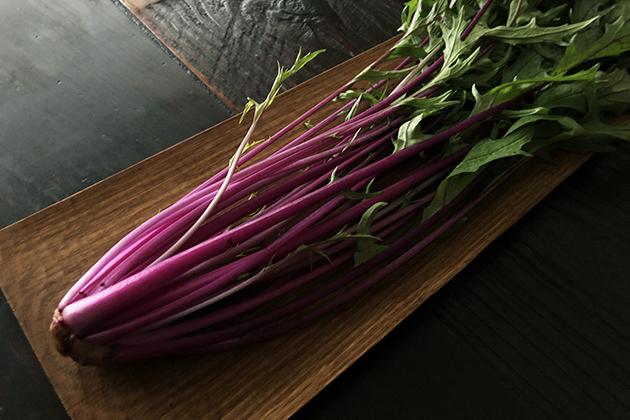 紅水菜の茎
